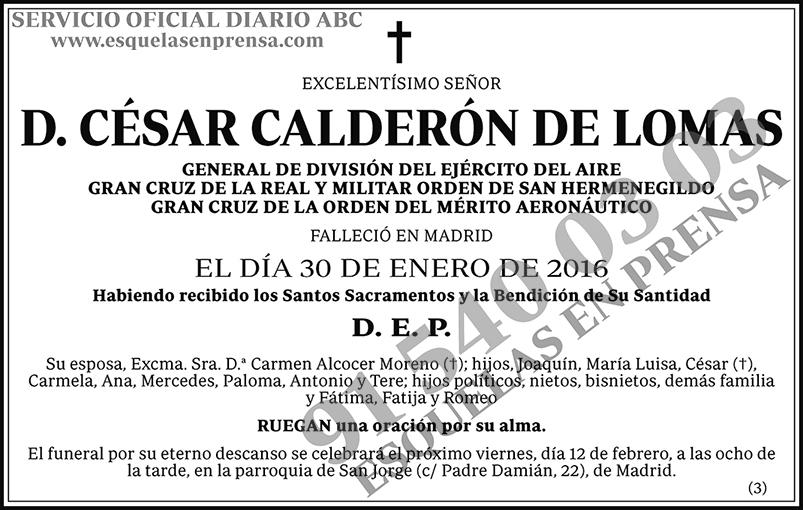 César Calderón de Lomas